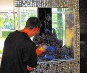 polishing aquariums